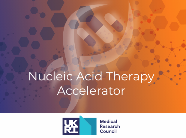 Thumbnail image for UKRI launches 'Nucleic Acid Therapy Accelerator'