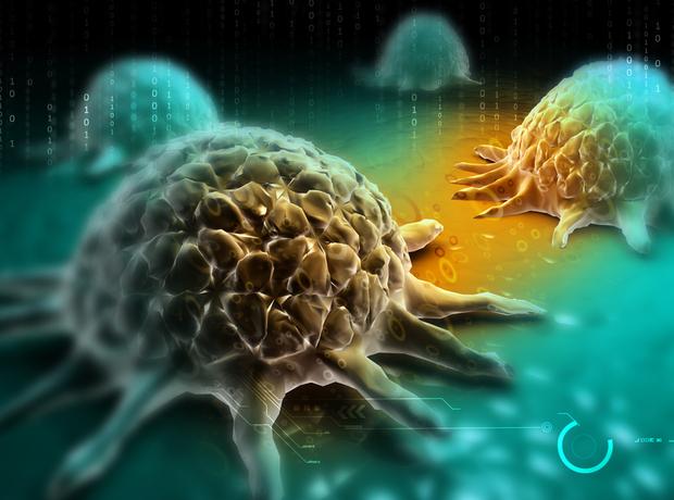Thumbnail image for Artios, Novartis form cancer therapies collaboration