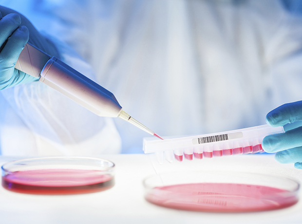 Thumbnail image for Phico Therapeutics gains £13.1m grant to advance antibacterial therapy